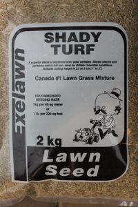cedar rim nursery lawn seed blog